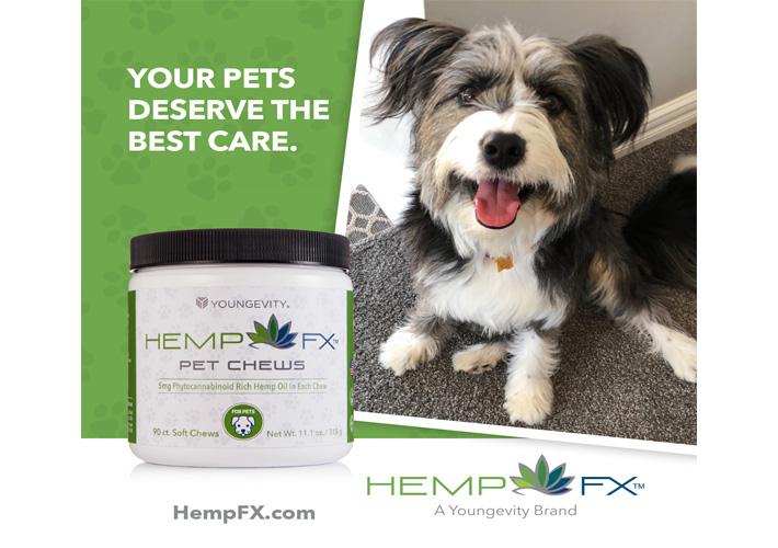 https://hempfx.com/pet-chews